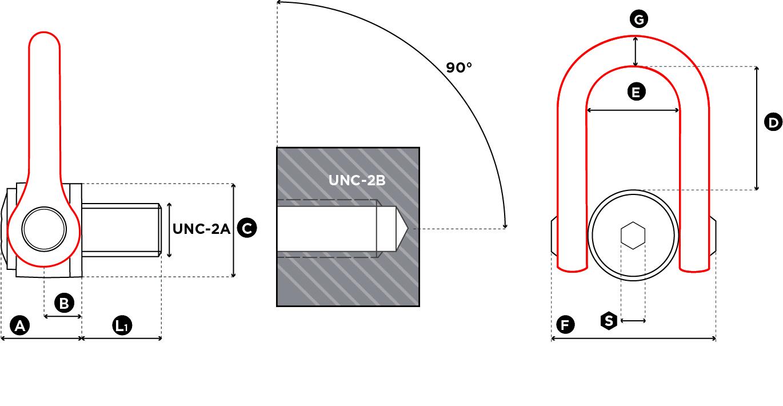 DSS - UNC