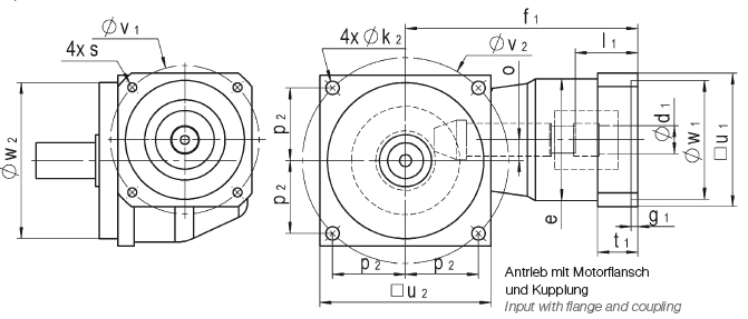 Input with flange and coupling