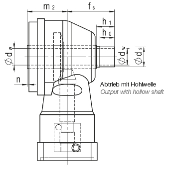 Output with hollow shaft